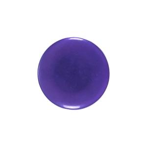 Пуговицы Т-24 15 мм цвет фиолетовый упаковка 24 шт
