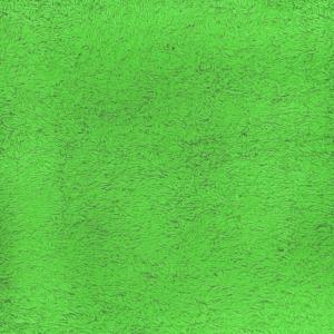 Простынь махровая цвет Молодая зелень 155/200