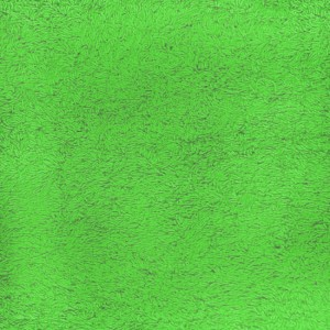 Простынь махровая цвет Молодая зелень 190/200