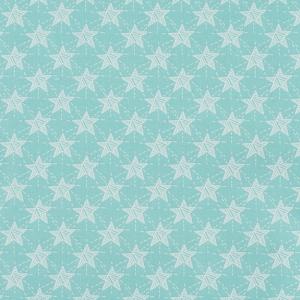 Ткань на отрез бязь ГОСТ Шуя 150 см 9947/3 Звезды цвет мята