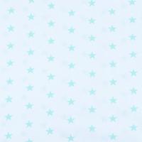 Ткань на отрез бязь плательная 150 см 1700А/16 цвет мята