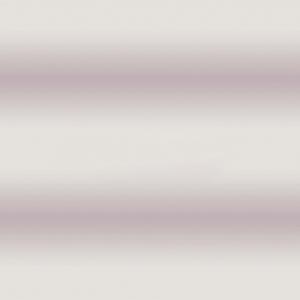 Поплин 220 см Есения 11428/2 компаньон
