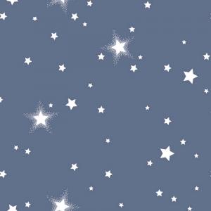 Перкаль 150 см Звездное небо 1 сер. 204561