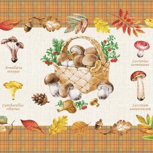 Полотно вафельное 50 см набивное арт 60 Тейково рис 5545 вид 1 Царство грибов